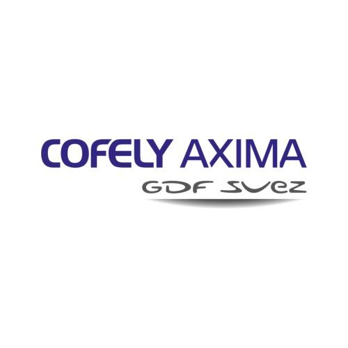 COFELY AXIMA référence entreprise ASSAMMA